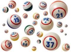 629255693_bingo_xlarge